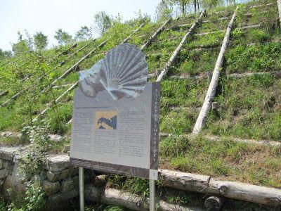 Parco Archeolgico